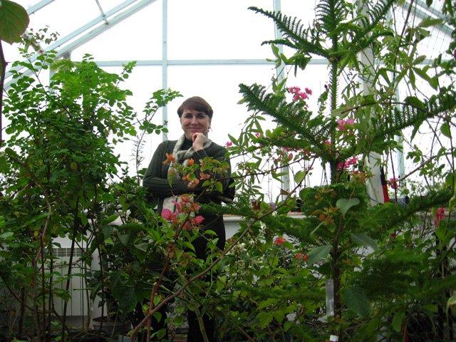 Растения из Нижегородской оранжереи 52231ada72be