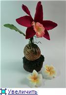 Цветы ручной работы из полимерной глины - Страница 3 00aa60b58d9et