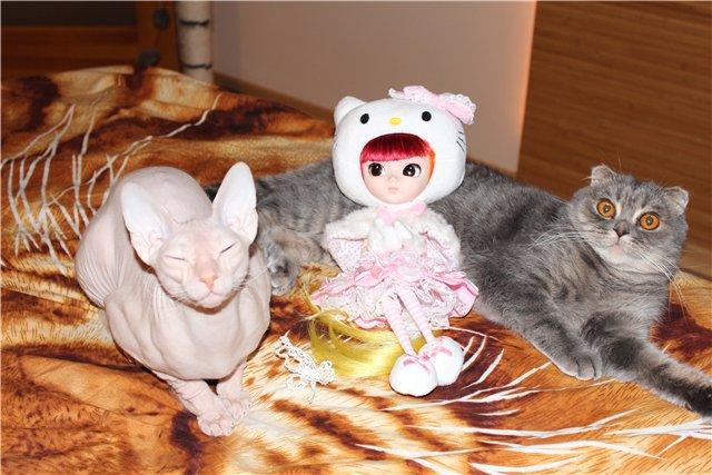PULLIP Hello Kitty — октябрь 2007 - Страница 2 29d52f2bfba5
