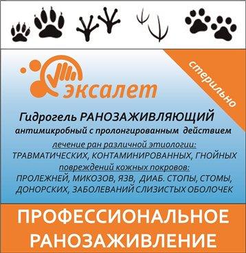 Интернет-магазин Red Dog- только качественные товары для собак! - Страница 3 Ac2983a4fedb