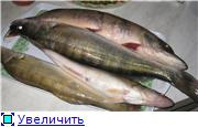 Четверг- рыбный день. D9d8303e9121t