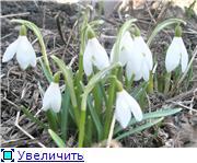 Фото месяца - апрель 4f5f670d6349t