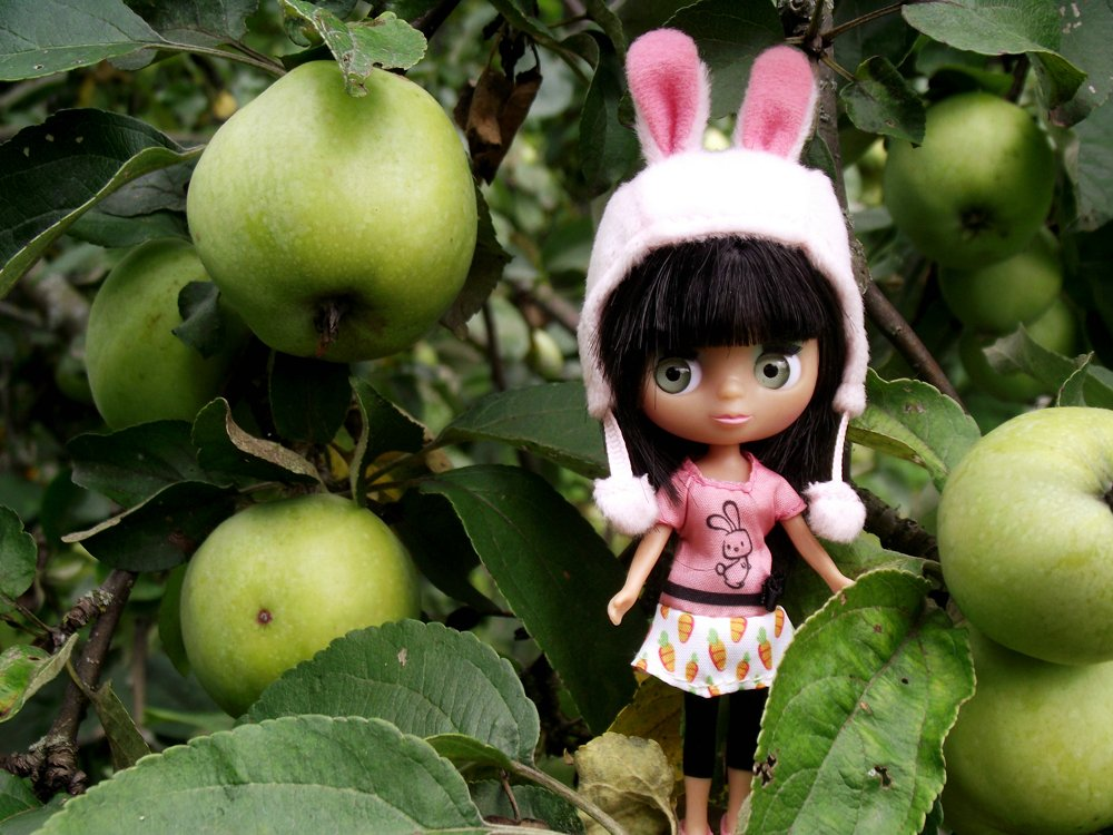 Akane: my dolls. 5a9512c406e0