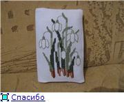Хвастушки сюрприза 8 марта 2010 Cfe399270560t
