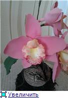 Цветы ручной работы из полимерной глины 491a9e3512bft