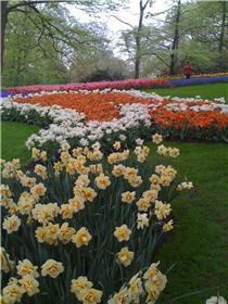 Рай тюльпанов или Кёкнхов - 2012 68b7c0c50c01t