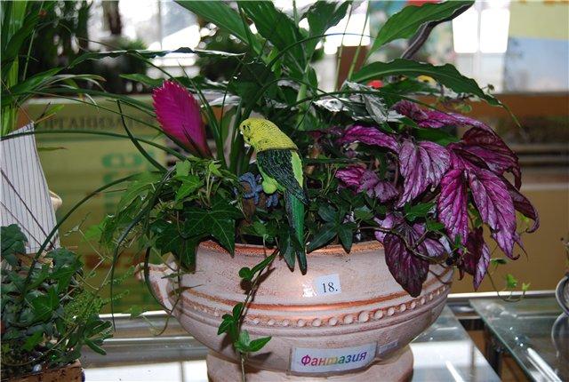 «Цветы.Ландшафт и Приусадебное хозяйство Весна - 2010» - Страница 3 3fb252fdf42f