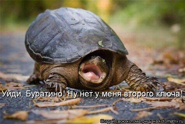 Юмор, шутки, приколы, анекдоты. - Страница 3 15211571d484