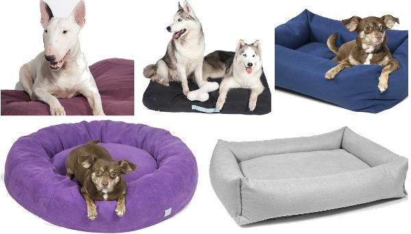 Интернет-зоомагазин Red Dog: только качественные товары для  - Страница 11 0a1af6ee0eac