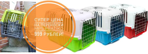 Интернет-зоомагазин Red Dog: только качественные товары для  - Страница 11 B3e4ec5e8954