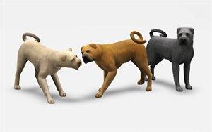 Собаки - Страница 6 16420b5ab5b1