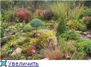Cад Людмилы Ивановой из черкасс C0eb57633095t