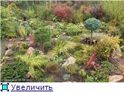 Cад Людмилы Ивановой из черкасс 09166612e244t
