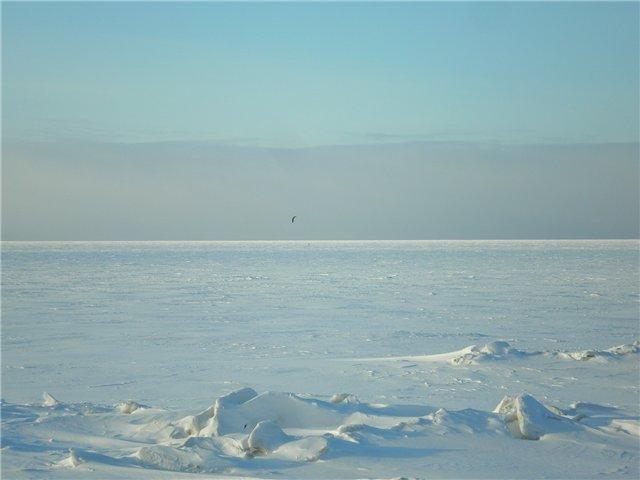 Белое море - вот ты какое.... 7e01645815ba
