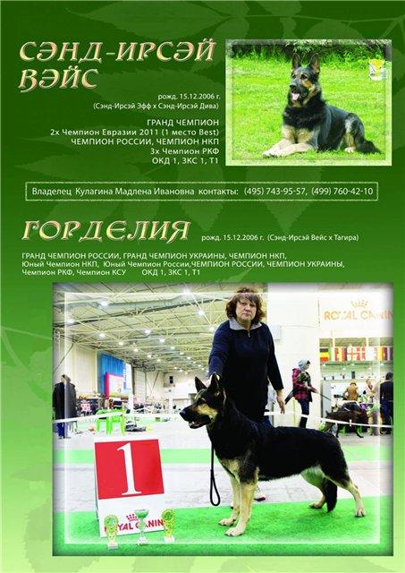 БОМОН РОСС ЗЕВС 2b291e2fa759