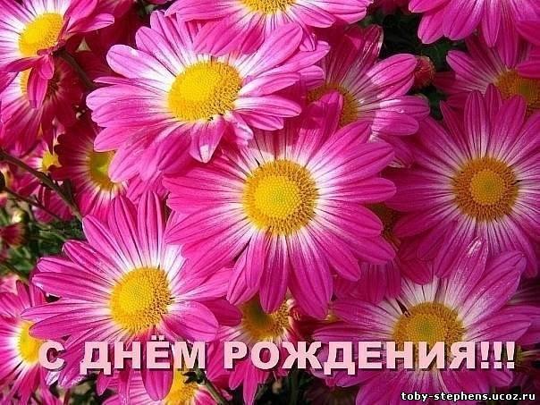 Поздравляем с Днём рождения Анну (Ласку)! - Страница 5 1baec4b9226b