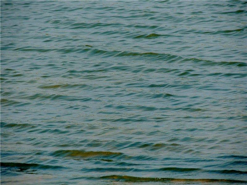 Фотографии рек и речных судов A59bf9c6a18c