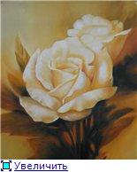 Цветы, букеты 3658e224bb15t