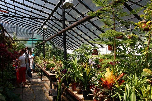 Экскурсия по Ботаническому Саду 357169141cb0