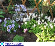 Весенне цветущие E4ea88b18f50t