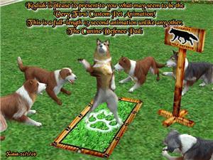 Позы для животных C11614a6fe1ft