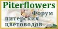 Piterflowers.Общение питерских цветоводов