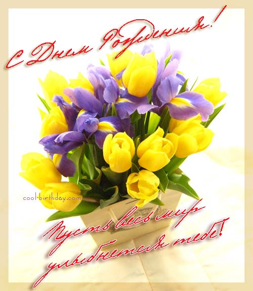 Поздравляем Mariava с Днём рождения! 2ea7c7ddc8e4