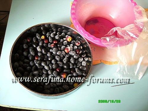 Черные оливки в масле A93bb256bef6