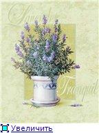 Цветы, букеты 435194769830t