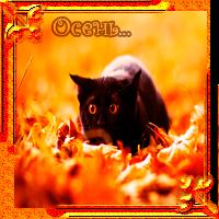 Осенняя аватарка 2012 380dd074c484