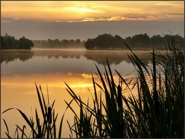 Золотое озеро 93327d72f043