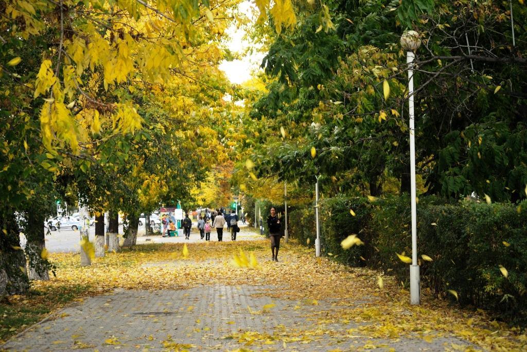 Осень в моем  городе B58b2c50fde1