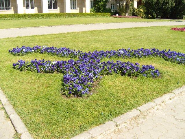 Крым. Никитский ботанический сад. C0ab23602819