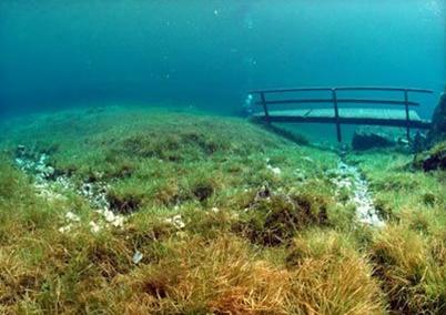 Grüner See - зелёное(Изумрудное) озеро в Австрии  Fcc7c2cae356