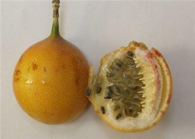 Экзотические фрукты и с чем их едят Dae91c38288f