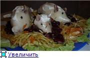 Кальмары C01dfb16aecbt