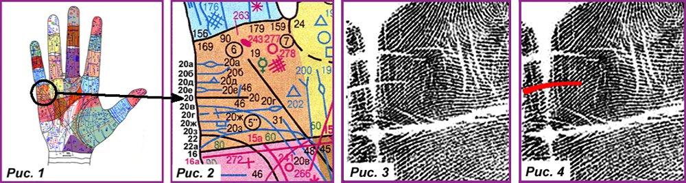 Основные, второстепенные, редкие линии и знаки 431128baac23