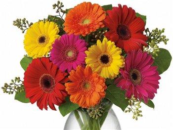 Поздравляем с Днем Рождения Евгению (Есения) 122e11d8c872t