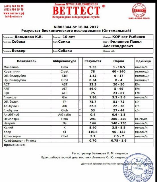 Москва, Селли, сука 10+ 2d0c811a694f