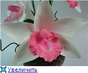 Цветы ручной работы из полимерной глины - Страница 4 E1fd3a12780dt