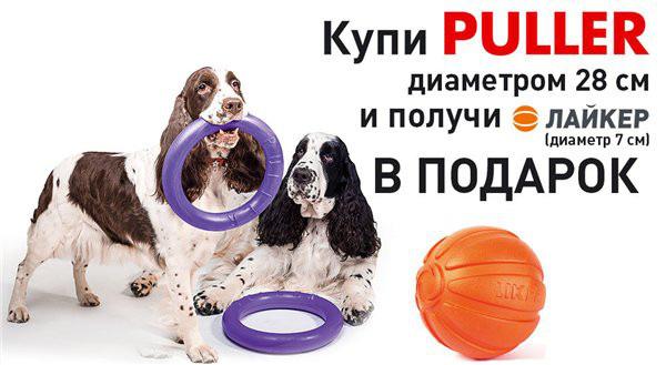 Интернет-магазин Red Dog- только качественные товары для собак! - Страница 3 65d29097f954