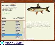 Волхов- турниры КВ (конкретный вид)   68c91206bb56t
