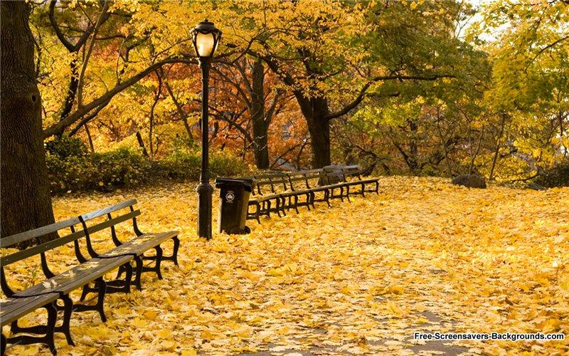 ბუნების ლამაზი ფოტოები 4606dcf35bed