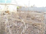 Потоп на Амуре и после - Страница 11 617cd4e60ffct