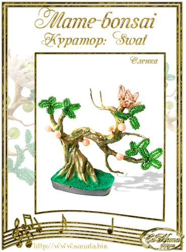 """Галерея """"Mame-bonsai"""" 0b10981938a7t"""