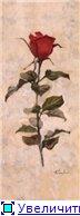 Цветы, букеты - Страница 2 5e6b53cc1ebft