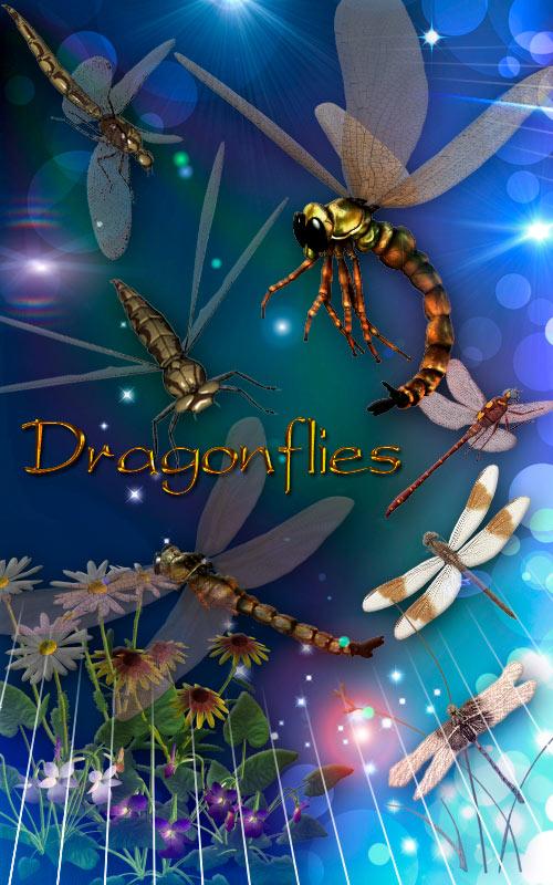 Клипарт Dragonfly- Стрекозы 2d4cd9c97935
