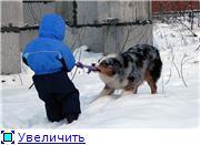 Австры и дети D55e1c5383cat