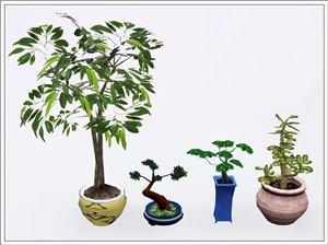 Цветы - Страница 2 B667cc5e2d14