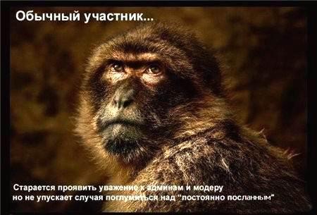 Фотогалерея форумчан Fd8a0ecd9834